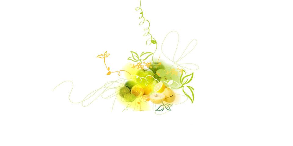 Blossom Hill Website